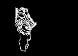 AAF logo