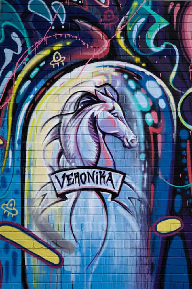 Gli stili di VERONICA dalla marmellata di graffiti delle strade