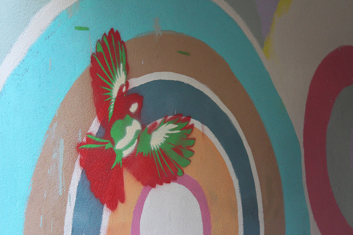mural de pájaros