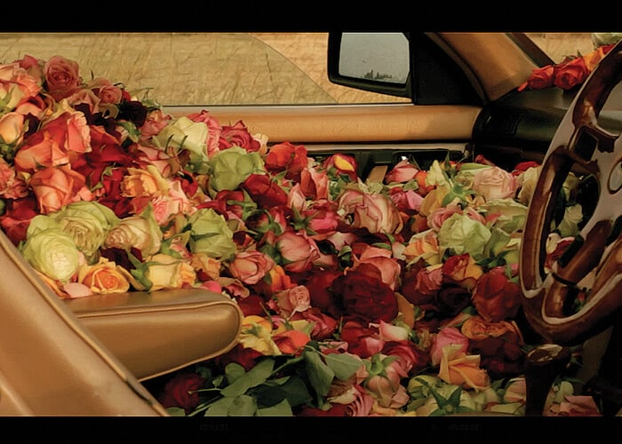 Amirah Tajdin, Detail eines Standbilds aus dem Land des Roségoldes, 2013. Digitaler Film. 4 Minuten. Bild mit freundlicher Genehmigung von Seven Thirty Films.