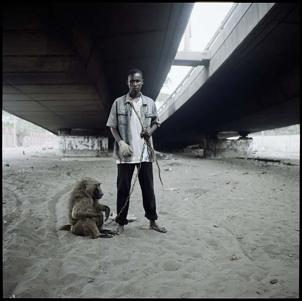 Pieter Hugo, Animal Handler with Ajasco, Lagos, Nigeria, 2007. Digital c-print, 152 x 152 cm, edition: 3/5 + 2 AP. Courtesy of Tiroche DeLeon Foundation.