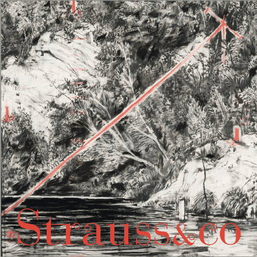 Strauss & Co e-catalogue