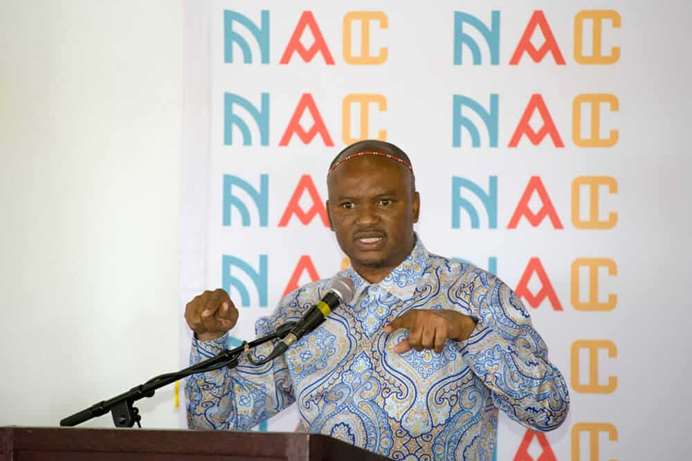 Zolani Mkiva, interim CEO of the National Arts Councile. Photographer: Andrew Brown/Cameraready