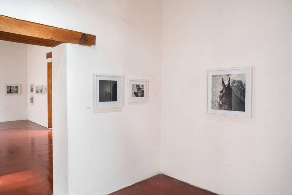 Jo Ractliffe's' exhibition at Centro Fotográfico Álvarez Bravo. Photographer: Jalil Olmedo.