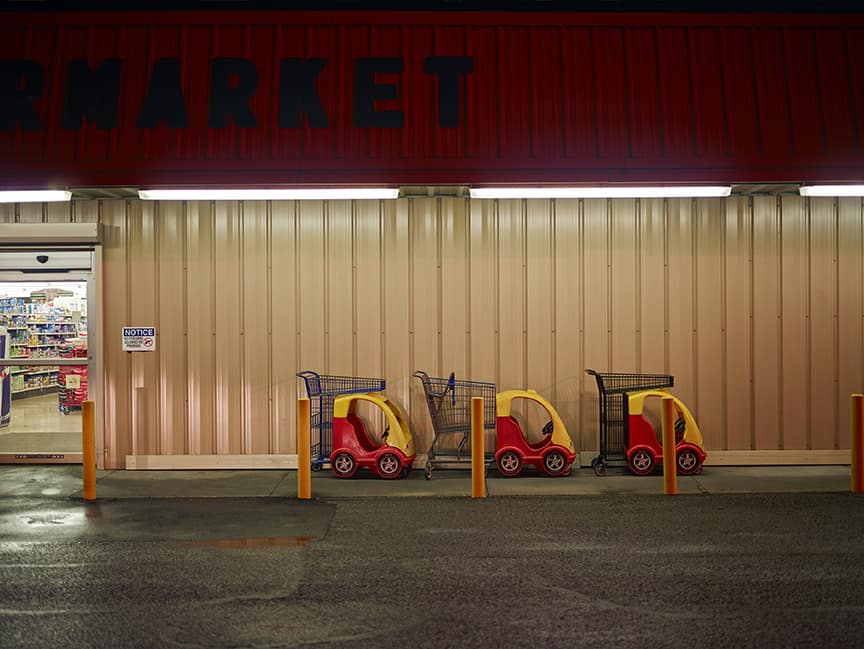 Barry Salzman, Supermarket Carts, 2014.