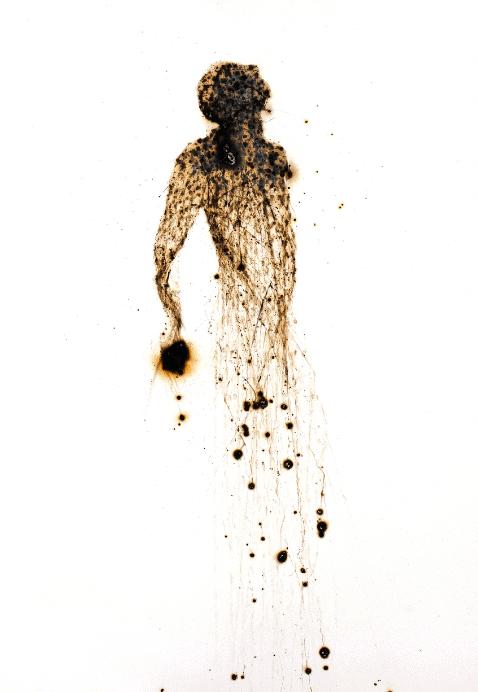 Pedro Pires, Universal # 5, 2019. Intervention auf Papier, 60,5 × 41,3 × 0,1 cm.